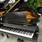 Schiller Performance Grand Piano Berlin 5'3 Black Polish