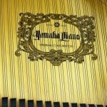 Yamaha C1 6337088 label