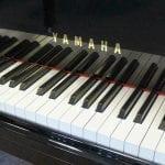Yamaha C2 keys