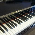 Yamaha C3 6105160 Grand Keys
